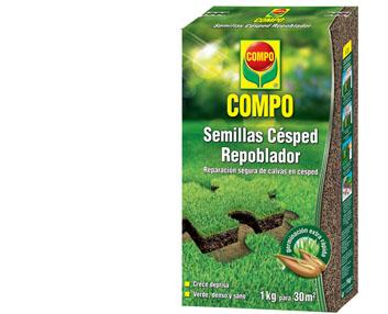 Verdeesvida semillas de c sped repoblador - Semillas de cesped para jardin ...
