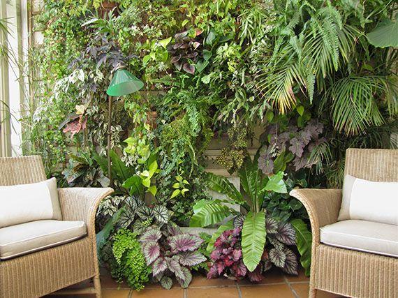 Verdeesvida jardines de invierno un espacio verde for Plantas verticales de interior