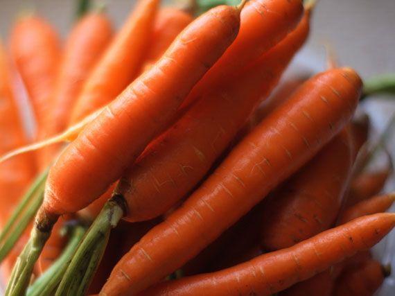 verdeesvida :: zanahorias y rabanitos: ¡cultívalos en casa!
