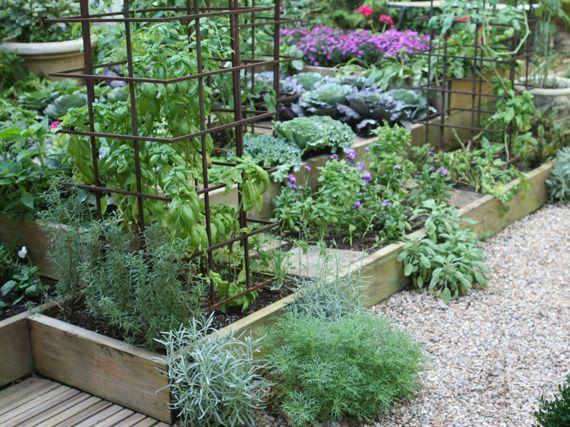 Verdeesvida un huerto urbano para tu propia cosecha for El jardin urbano