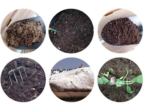 Verdeesvida abonos org nicos el reciclaje de la vida - Abono organico para plantas ...