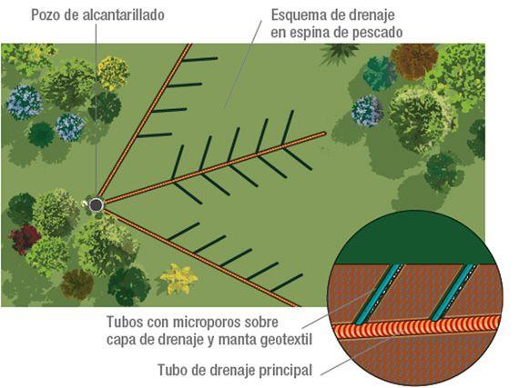 Verdeesvida problemas de drenaje en el jard n for Drenaje de jardin